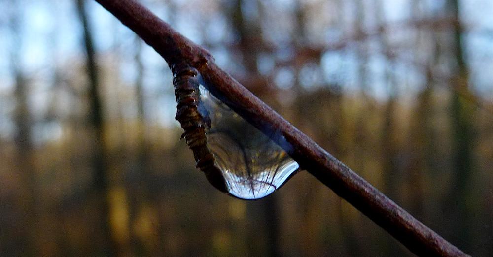 droplet-1.jpg